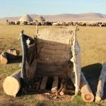 Toilet kyrgyzs style