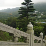 Chinese flair, Lantau Island (HK)