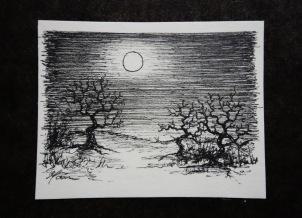 Moornacht, Minizeichnung