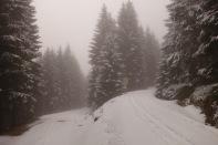 Der Schnee wird NOCH mehr...